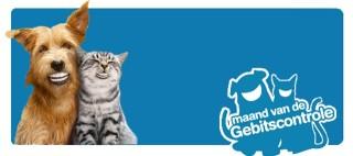 Afbeeldingsresultaat voor maand van het gebit dierenarts